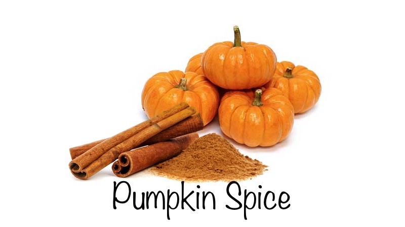 Pumpkin Spice Lip Balm .15 oz